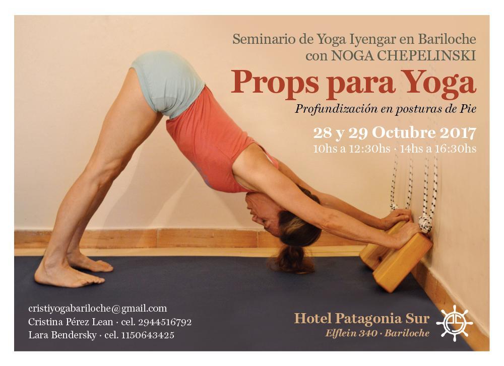 Seminario Iyengar Bariloche  PROPS PARA YOGA 959eafbb78c6